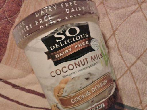 So Delicious coconut milk cookie dough ice cream